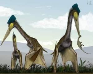 ekte-pterosaur